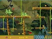 Orange jeux en ligne tarot