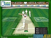 Hit for Six Cricket